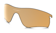 bronze polarized