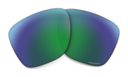 prizm daily polarized