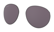 Forager Replacement Lenses