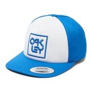 Snapback Logo Hat