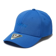 6 Panel Stretch Metallic Hat - Electric Shade