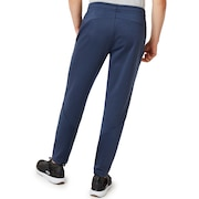 3Rd-G Synchronism Pants 2.7 - Foggy Blue