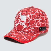 Skull Graphic Cap 14.0