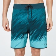 Painter Boardshort 19