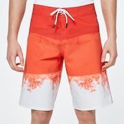 Color Block Shade Boardshort 21