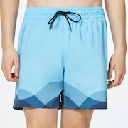Waves Seamless Beachshort 16