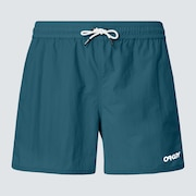 All Day 16 Beach Short - Bayberry