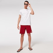Double Up 20 Rc Boardshorts - Iron Red