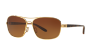 Sanctuary - Polished Gold / Brown Gradient Polarized