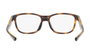 Cross Step (TruBridge™) - Polished Brown Tortoise