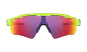 Radar® EV Path® Retina Burn Collection - Retina Burn
