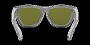 Frogskins™ - Checkbox Silver