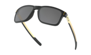 Holbrook™ Mix - Matte Black / Prizm Black Polarized