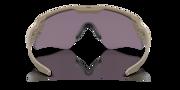 Standard Issue Ballistic M Frame® Alpha - Terrain Tan