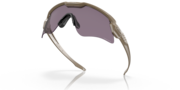 Standard Issue Ballistic M Frame® Alpha Array - Terrain Tan