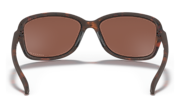 Cohort - Matte Brown Tortoise