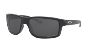 prizm black polarized