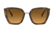 Side Swept - Matte Brown Tortoise / Brown Gradient Polarized