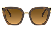 Side Swept - Matte Brown Tortoise