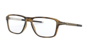 Satin Brown Tortoise
