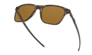 Apparition™ - Brown Tortoise